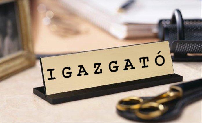 Nyilvános pályázat a Vajdasági Magyar Művelődési Intézet igazgatói tisztségének betöltésére